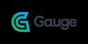 Gauge_feature-1